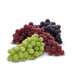 Fruits_Thumbnails_grapes_1