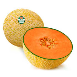 Fruits_Thumbnails_magmelon
