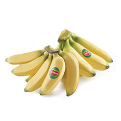 Fruits_Thumbnails_minibananas