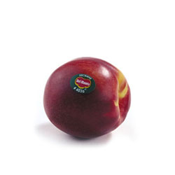 Fruits_Thumbnails_nectarines_2